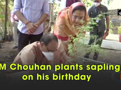 CM Chouhan plants saplings on his birthday