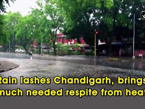 Rain lashes Chandigarh, brings much needed respite from heat