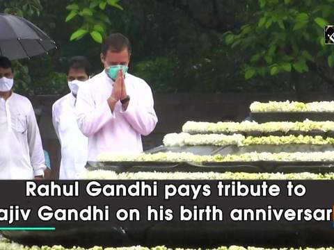 Rahul Gandhi pays tribute to Rajiv Gandhi on his birth anniversary