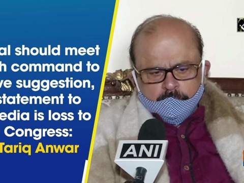 Sibal should meet high command to give suggestion, statement to media is loss to Congress: Tariq Anwar