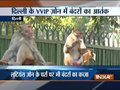 Monkeys invade Parliament, Lutyens Delhi