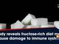 Study reveals fructose-rich diet may cause damage to immune system