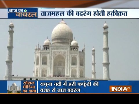Taj Mahal infected by insects, monument colour change worries Supreme Court