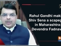 Rahul Gandhi making Shiv Sena a scapegoat in Maharashtra: Devendra Fadnavis