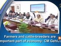 Farmers and cattle-breeders are important part of economy: CM Gehlot