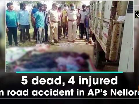 5 dead, 4 injured in road accident in AP's Nellore