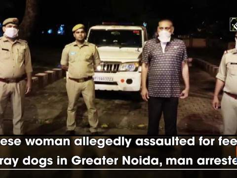 Chinese woman allegedly assaulted for feeding stray dogs in Greater Noida