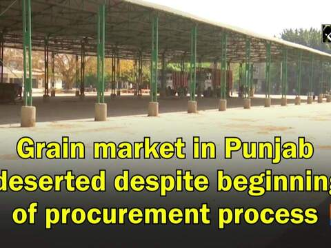 Grain market in Punjab deserted despite beginning of procurement process