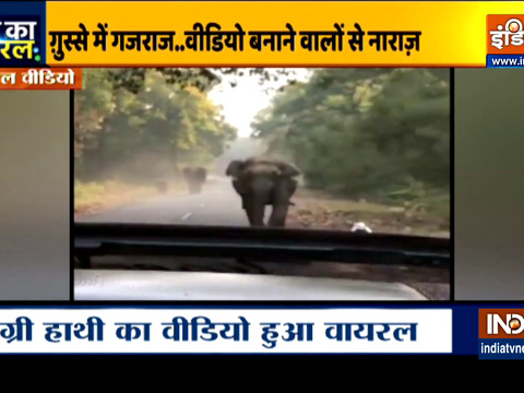 Aaj Ka Viral: Watch Elephant charges towards jeep after tourist says Kuch Nahi Hoga