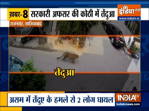 Top 9 news: Panic grips Ghaziabad after leopard sighting in upscale locality