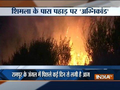 A wild fire broke out in a jungle near Shimla