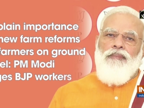 Explain importance of new farm reforms to farmers on ground level: PM Modi urges BJP workers
