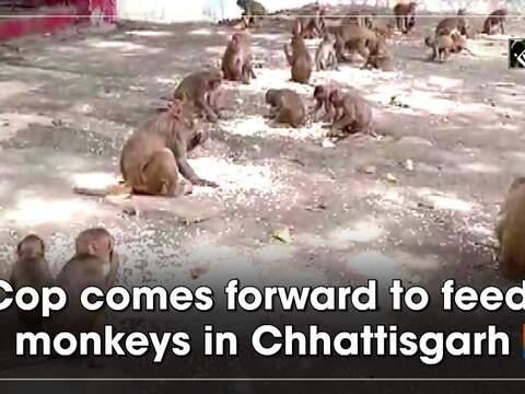 Cop comes forward to feed monkeys in Chhattisgarh