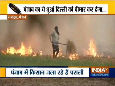रोक के बाद भी पंजाब के राजपुरा में किसानों ने जलायी पराली