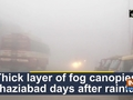 Thick layer of fog canopies Ghaziabad days after rainfall