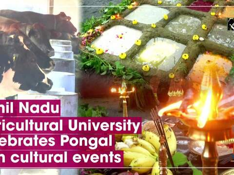 Tamil Nadu Agricultural University celebrates Pongal with cultural events