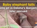 Baby elephant falls into pit in Odisha's Ganjam, later rescued