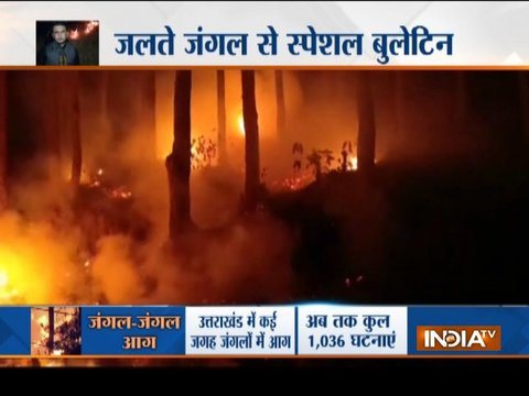 Special Report: Forest fire incidents create panic in Uttarakhand