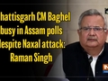 Chhattisgarh CM Baghel busy in Assam polls despite Naxal attack: Raman Singh