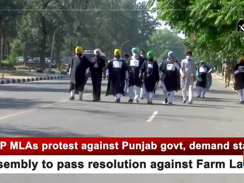 AAP MLAs protest against Punjab govt, demand state assembly to pass resolution against Farm Laws