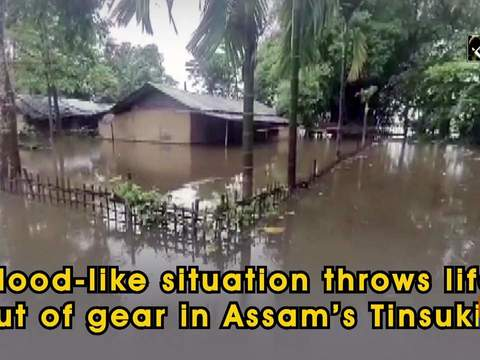 Flood-like situation throws life out of gear in Assam's Tinsukia