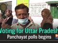 Voting for Uttar Pradesh Panchayat polls begins