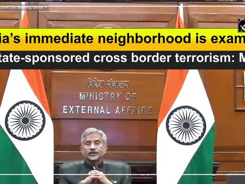 India's immediate neighborhood is example of state-sponsored cross border terrorism: MEA