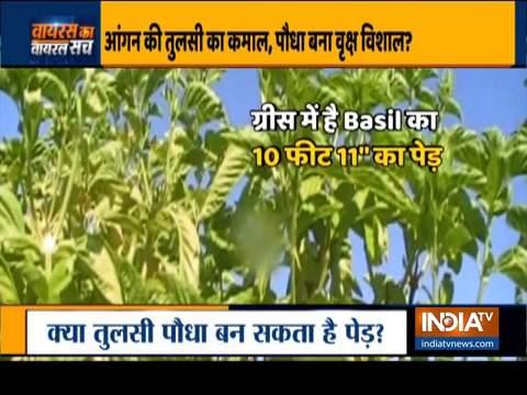 देखिए इंडिया टीवी का स्पेशल शो वायरस का वायरल सच | 2 जुलाई, 2020
