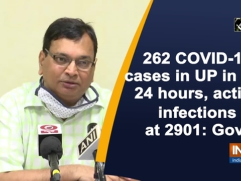 262 COVID-19 cases in UP in last 24 hours, active infections at 2901: Govt