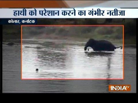 Karnataka: Elephant tramples man to death in Kolar, incident caught on camera