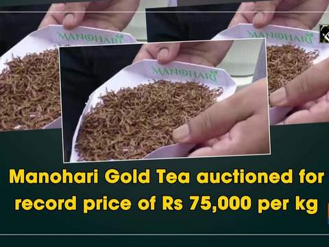 Manohari Gold Tea auctioned for record price of Rs 75,000 per kg
