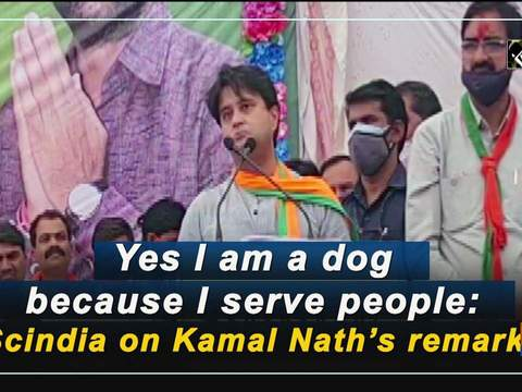Yes I am a dog because I serve people: Scindia on Kamal Nath's remark
