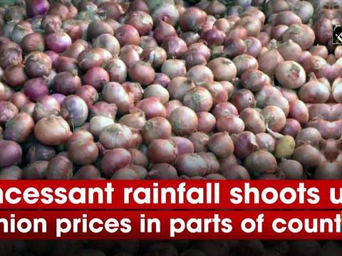 Incessant rainfall shoots up onion prices in parts of country