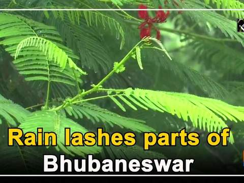 Rain lashes parts of Bhubaneswar