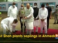 Amit Shah plants saplings in Ahmedabad