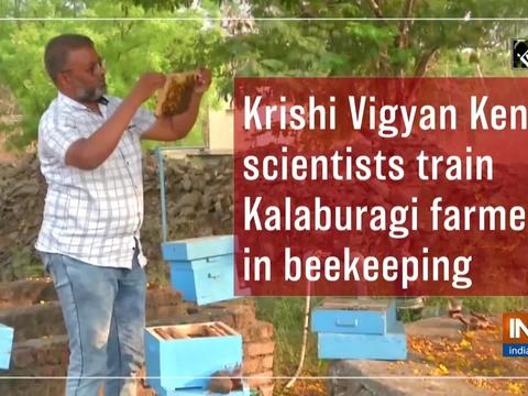 Krishi Vigyan Kendra scientists train Kalaburagi farmers in beekeeping