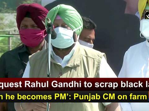 'Request Rahul Gandhi to scrap black laws when he becomes PM': Punjab CM on farm laws