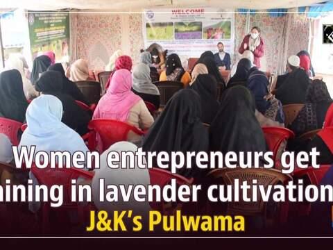 Women entrepreneurs get training in lavender cultivation in J&K's Pulwama
