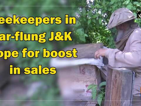 Beekeepers in far-flung JandK hope for boost in sales
