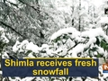 Shimla receives fresh snowfall