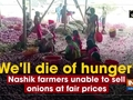 'We'll die of hunger': Nashik farmers unable to sell onions at fair prices