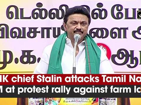 DMK chief Stalin attacks Tamil Nadu CM at protest rally against farm laws