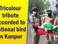 Tricolour tribute accorded to national bird in Kanpur