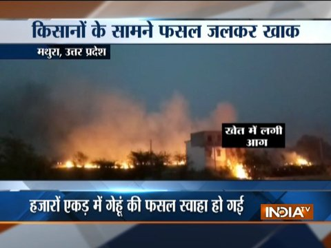 Punjab, Haryana, Uttar Pradesh farmers hit as massive fire leads to crop damage