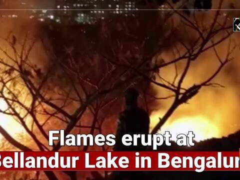 Flames erupt at Bellandur Lake in Bengalur