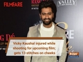Vicky Kaushal injured while shooting for Bhanu Pratap Singh's horror film; gets 13 stitches on cheeks