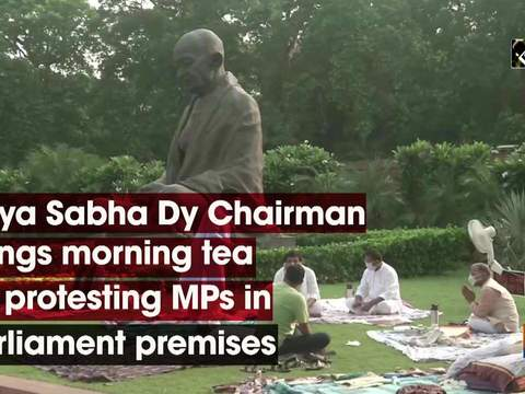 Rajya Sabha Dy Chairman brings morning tea for protesting MPs in Parliament premises