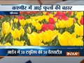 Asia's largest Tulip garden in Srinagar open to public